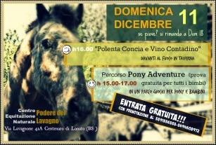 volantino-giornata-pony
